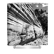 Sandstone Wall Shower Curtain