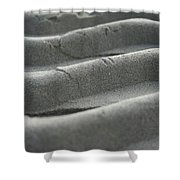 Sandtracks2 Shower Curtain