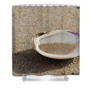 Sandy Dish Shower Curtain