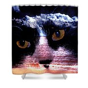 Sandy Paws Shower Curtain by Clayton Bruster