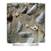 Sandy Seashells Shower Curtain