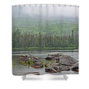 Sandy Stream Pond Shower Curtain