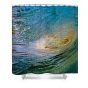 Sandy's Beauty 4 Shower Curtain