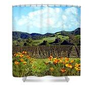 Sanford Ranch Vineyards Shower Curtain by Kurt Van Wagner