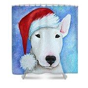 Santa Bully Shower Curtain