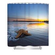 Santa Cruz Starfish Shower Curtain
