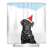 Santa Dog In The Snow Shower Curtain