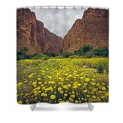 317804-santa Elena Canyon In Bloom  Shower Curtain