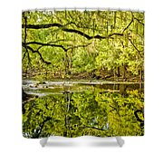 Santa Fe River Shower Curtain