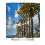 Santa Monica Ca Palisades Park Bluffs  Shower Curtain