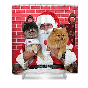 Santa Paws With Two Dogs Shower Curtain