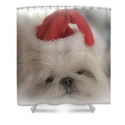 Santa's Sweetie Shower Curtain