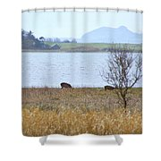 Santa's Weather Report Shower Curtain