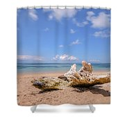 Sanur Beach - Bali Shower Curtain