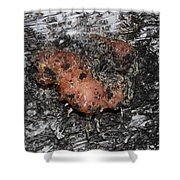 Sap Of The Tree Shower Curtain