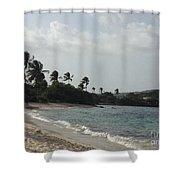Sapphire Palms Shower Curtain