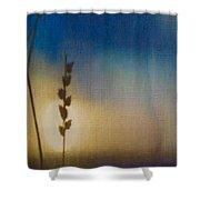 Sapphire Twilight Shower Curtain