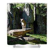Sarabi Shower Curtain