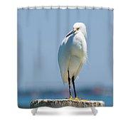 Sarasota Snow Shower Curtain