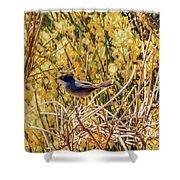 Sardinian Warbler Shower Curtain