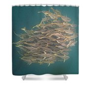 Sargo Shower Curtain