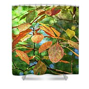 Sassafras Leafs Texture 7k_dsc0933_16-10-30 Shower Curtain