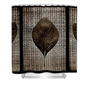 Sassafras Leaves With Wicker Shower Curtain