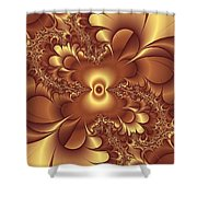 Satin And Lace Shower Curtain