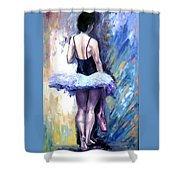 Satin Shoes Shower Curtain