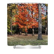 Saturday Here In The Park Shower Curtain