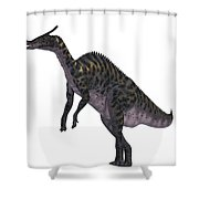 Saurolophus Dinosaur On White Shower Curtain