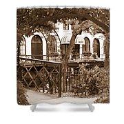 Savannah Arches In Sepia Shower Curtain