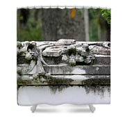 Savannah Bonaventure Shower Curtain