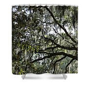 Savannah Green Leaves Shower Curtain