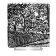 Savannah Perspective - Black And White Shower Curtain