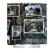 Savannah Scenes Collage Shower Curtain