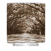 Savannah Sepia - Glorious Oaks Shower Curtain