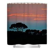 Savannah Sunset Shower Curtain
