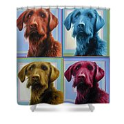 Savannah The Labradoodle Shower Curtain
