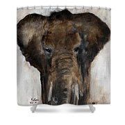 Save The Elephant Shower Curtain