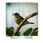 Savor The Moment Shower Curtain
