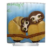 Saw-whet Owls Shower Curtain