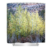 Sawtooth National Forest 2 Shower Curtain