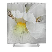 Say Ahhh Iris Series 11 Shower Curtain