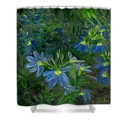 Scaevola Shower Curtain