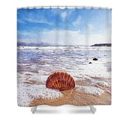 Scallop Shell On The Beach - Impressions Shower Curtain