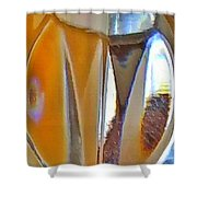 Scarab II Shower Curtain