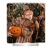Scarecrow With A Carved Pumpkin  In A Corn Field Shower Curtain