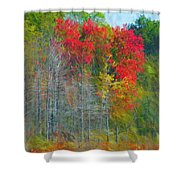 Scarlet Autumn Burst Shower Curtain