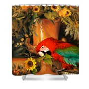 Scarlet Badboy Shower Curtain